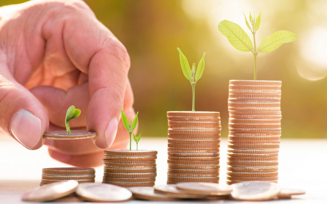 Wealth Management 101: What It Is and Why It Matters