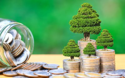 Understanding the Obstacles to Socially Responsible Investing